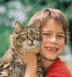 Caring For Pets Teaches Children Responsibility